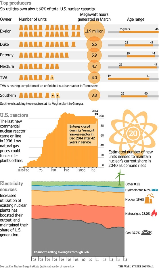 US Nuclear Power Future