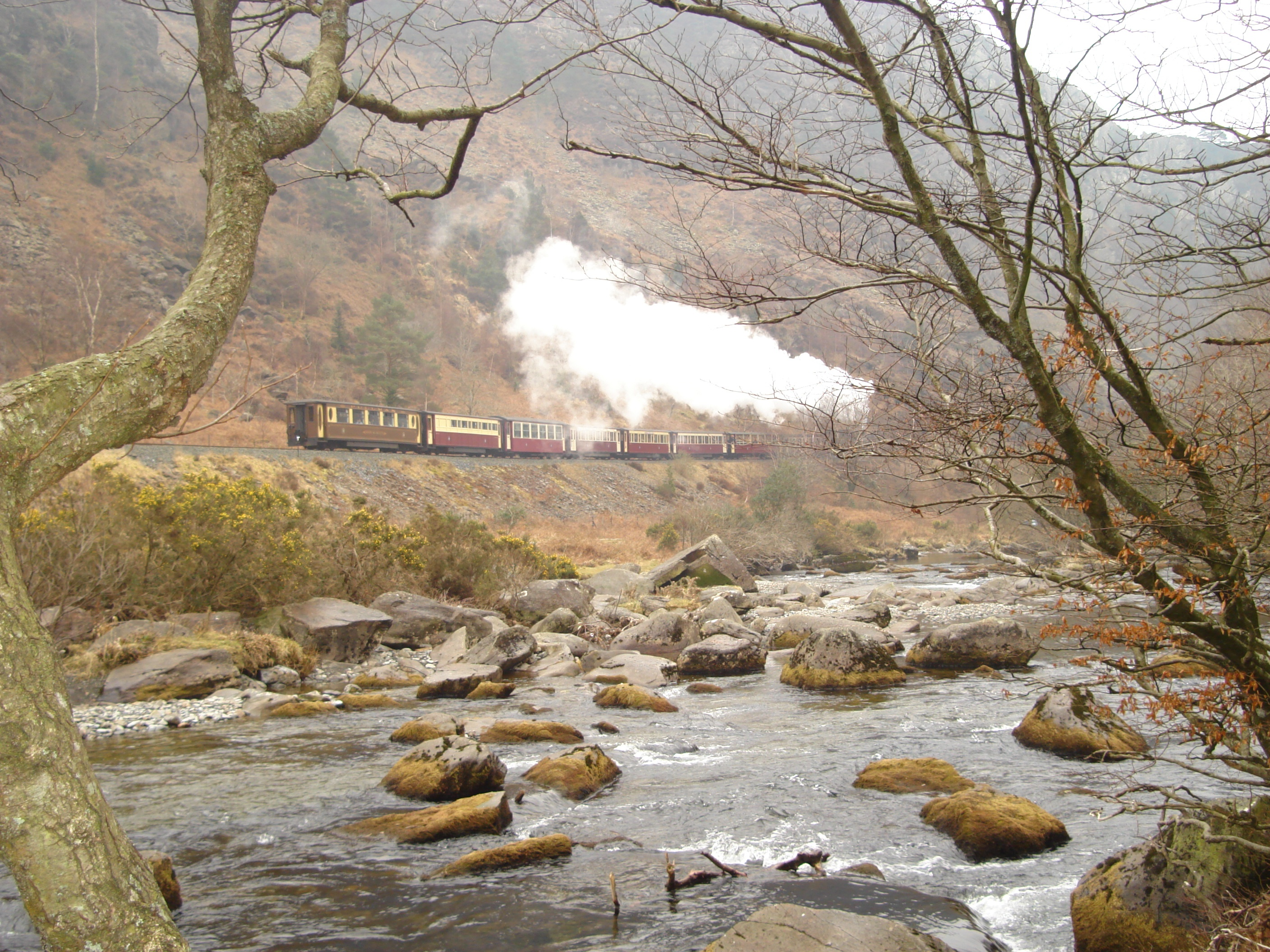 train-in-wales-uk