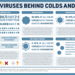 The Viruses Behind Colds And Flu: Infographic