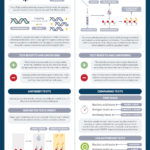 A Guide To COVID-19 Testing: Infographic