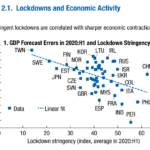 On The Relationship Between Lockdowns and Economic Activity